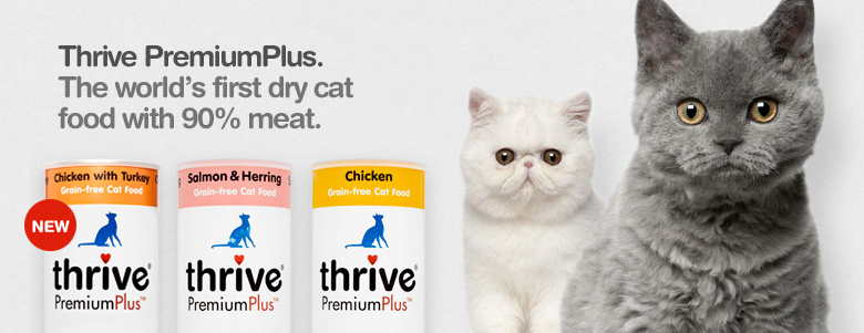 Cat Dry Food Category Banner